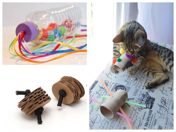 Игрушки для кошек своими руками: 8 идей для усатых и полосатых вдохновляемся,домашние животные,игрушки,своими руками,сделай сам