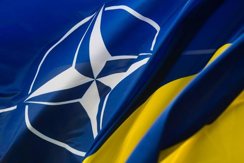 Спор с товарищем Дарвином о вступлении ВСУ в НАТО украина