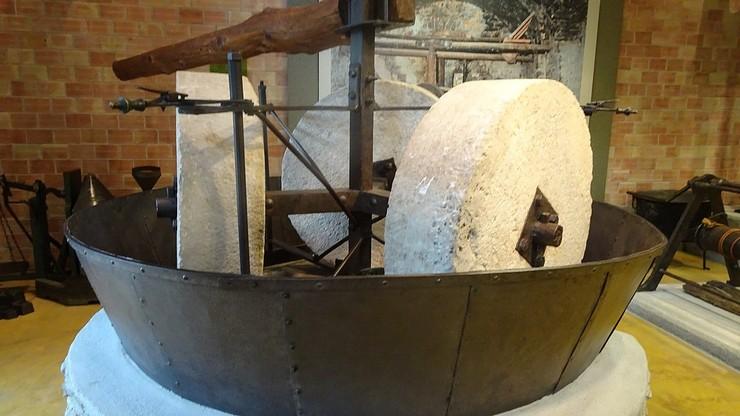 Музей Олив и Греческого оливкового масла