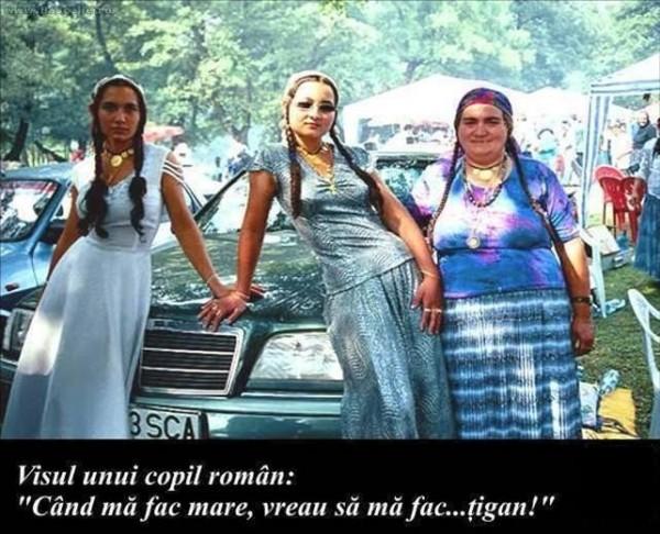 08_ruminiya_88461