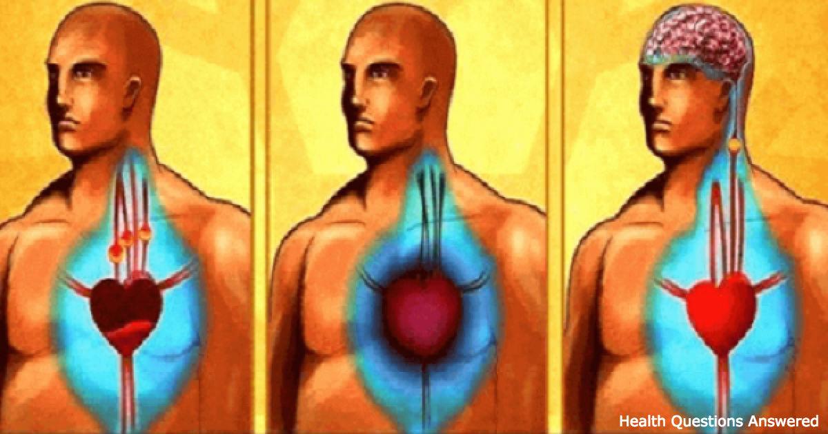 10 продуктов, которые прочистят ваши артерии лучше любого лекарства