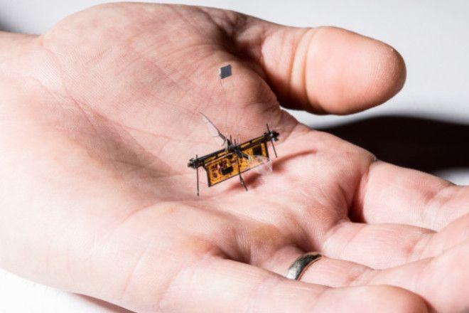 Самый маленький в мире летающий гаджет