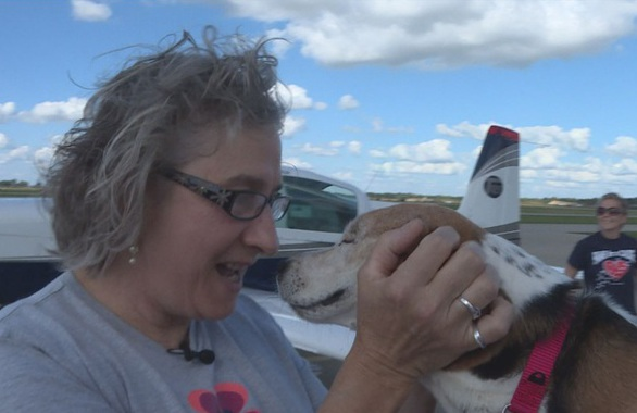 Шейлу бросили умирать, но привязанная к дереву собака все-таки нашла хозяйку