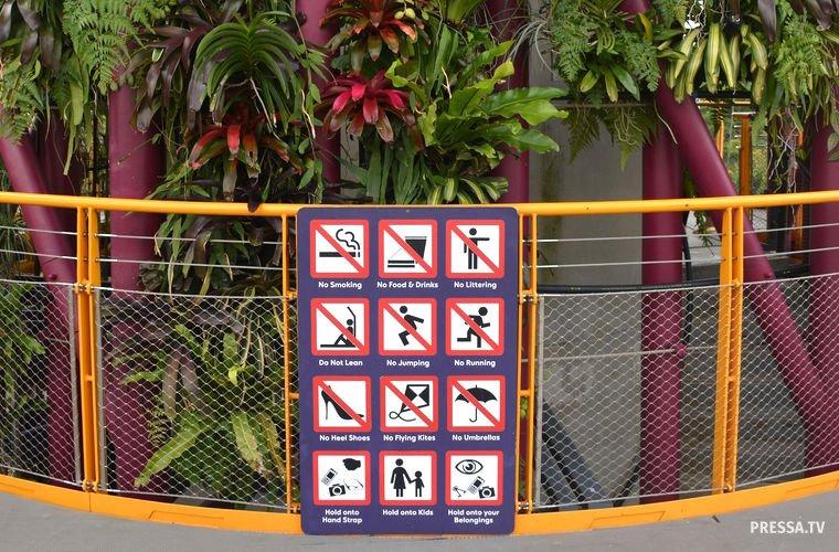 Традиции и запреты в Сингапуре
