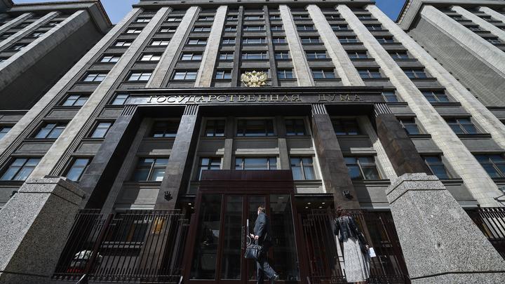 Госдума услышала призыв ВРНС: Преподавателей предложили регулярно проверять у психиатров россия