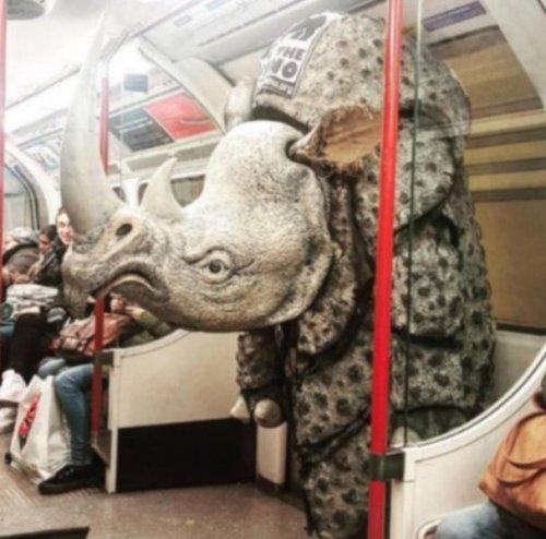 Странные и необычные пассажиры в метро
