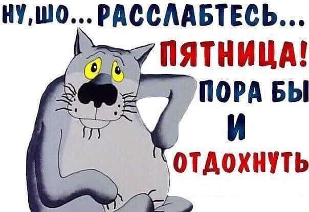 Животные умеют порадовать))