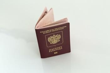 Процедуру получения гражданства упростят