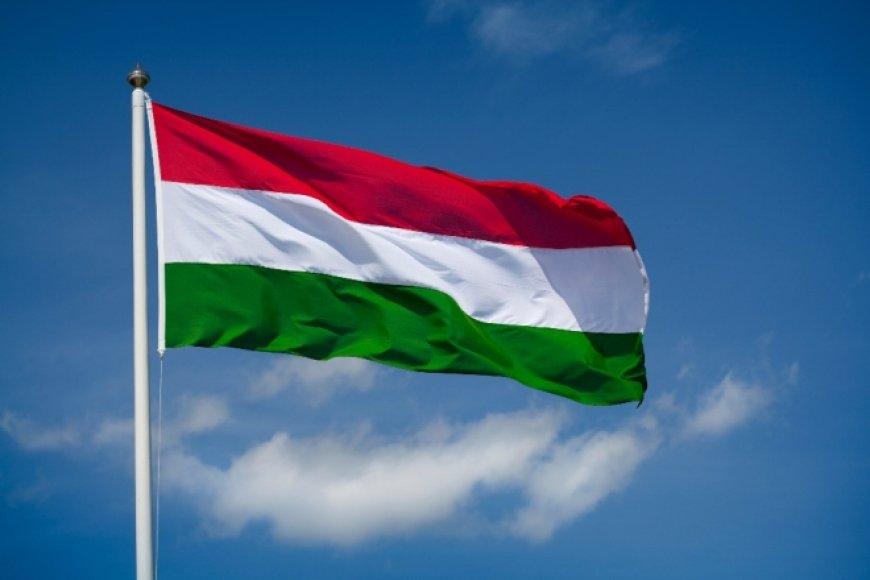 Министр иностранных дел Украины планирует выслать венгерского консула из страны