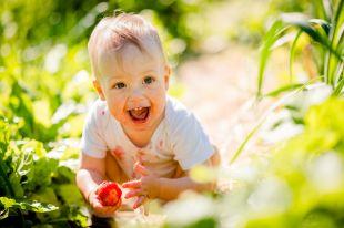 Лекарство с ветки. Какие именно ягоды чем полезны?