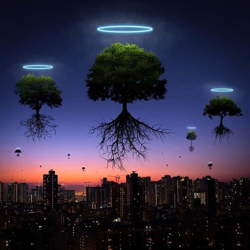 25. Прошёл тропический шторм Мангхут, как и 15 тысяч деревьев (как минимум) Томми Фанг, гонконг, забавно, талант, фантазия, фото, фотошоп, художник