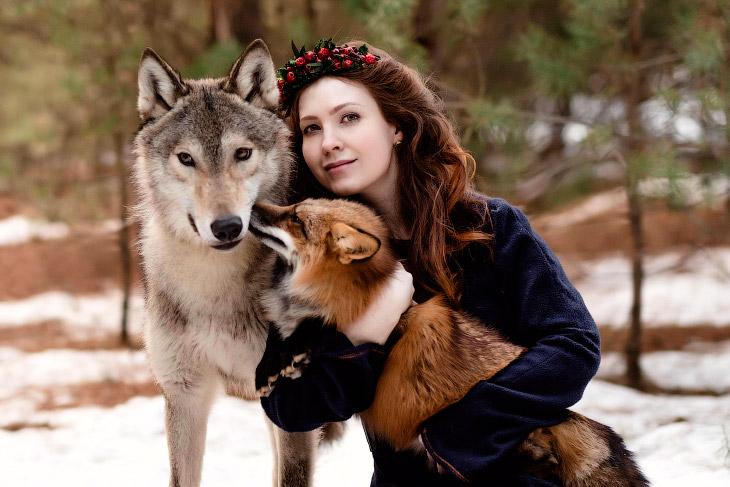 С волком и лисой