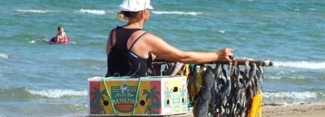 Бежавшие из Крыма заукраинцы вынуждены торговать вареной кукурузой на херсонских пляжах
