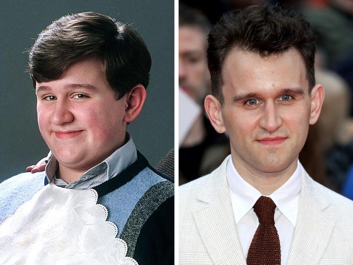 13детей-актеров из«Гарри Поттера», судьба которых сложилась совсем некак вкино (Кто-то стал жокеем, акто-то— преступником)