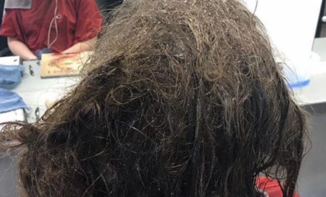 Женщина не причесывалась 3 месяца: парикмахеру понадобился день, чтобы сделать прическу Культура