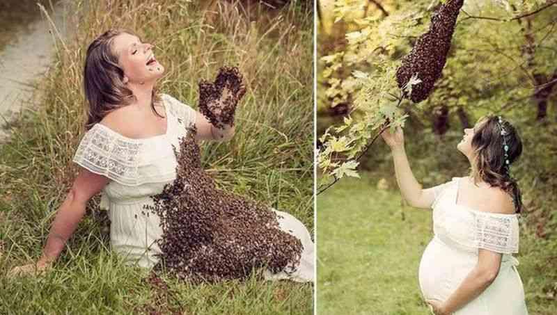 Ученые предполагают, что человек вероятнее всего происходит от пчелы