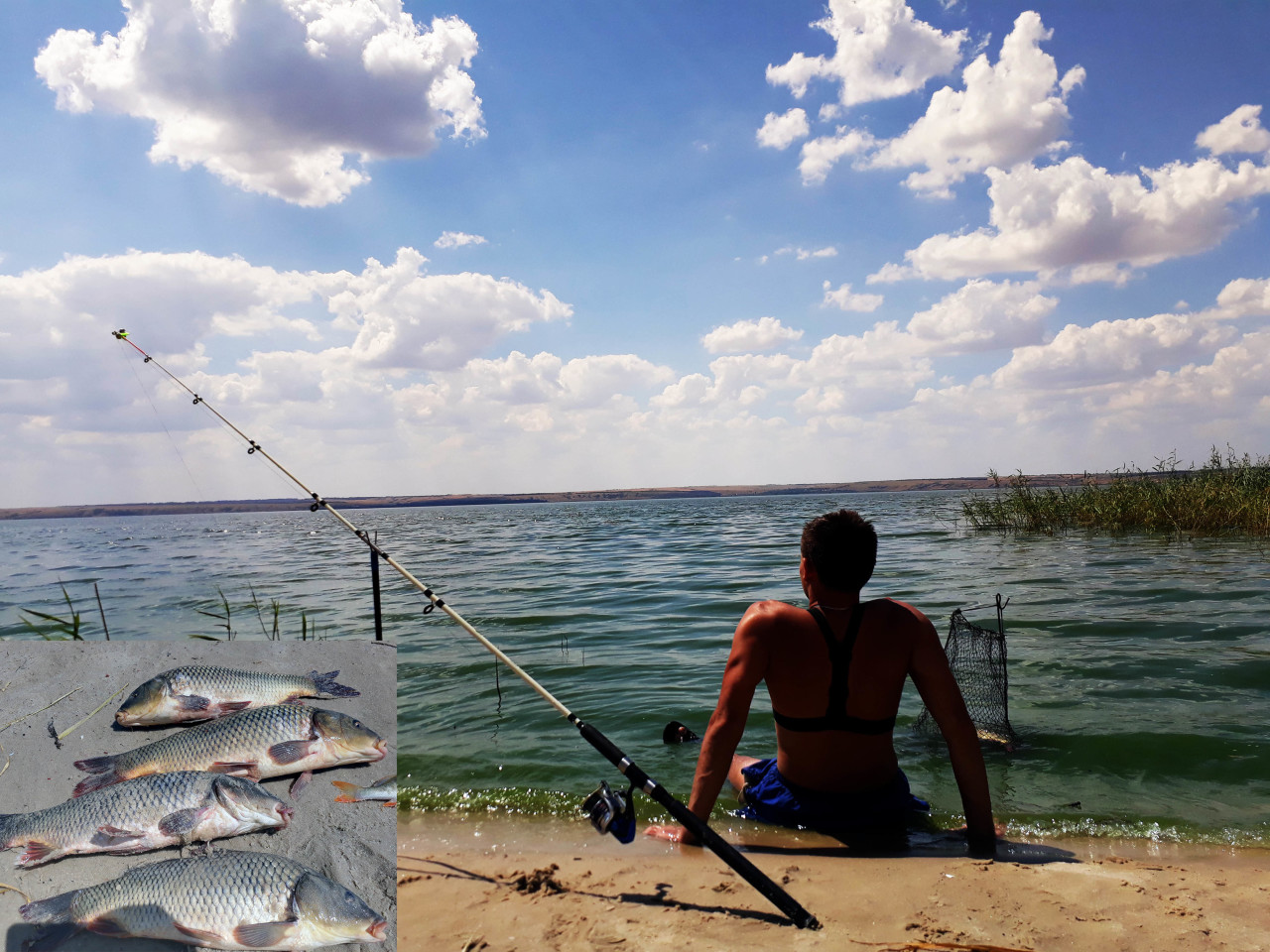 Рыбалка на карпа на фидер 2017 ВОТ ЭТО УЛОВ рыбалка на видео
