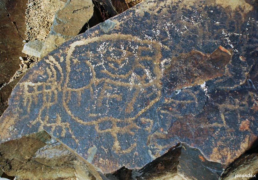 Древние наскальные рисунки Алтайского хребта