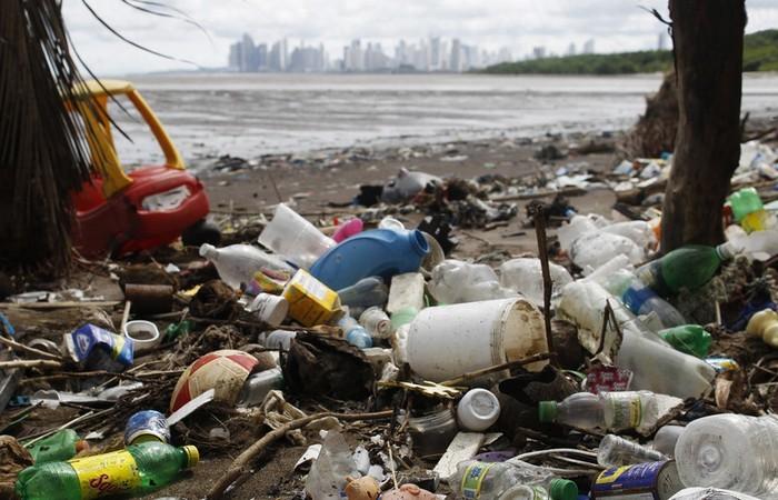 Природные материалы, которые смогут заменить пластик