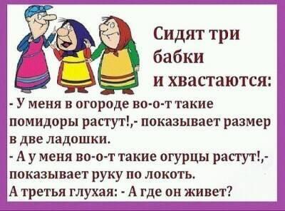 https://mtdata.ru/u17/photoC041/20635317667-0/original.jpeg#20635317667