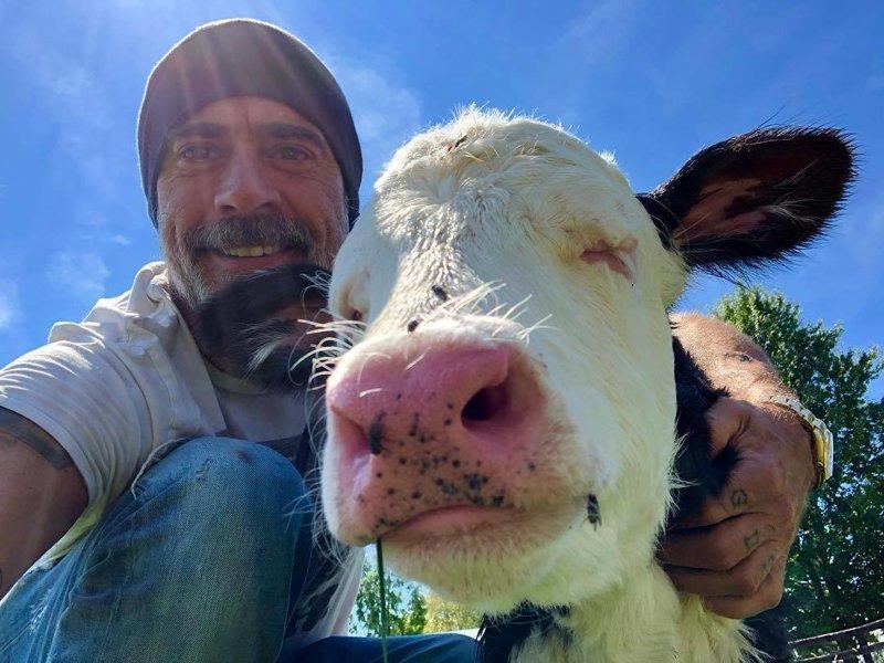 Актер нередко публикует снимки с обитателями его фермы Джеффри Дин Морган, актер, дружба, животные, осел, спасение, страус, эму