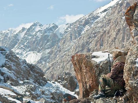 Выбор калибра и патрона для горной охоты