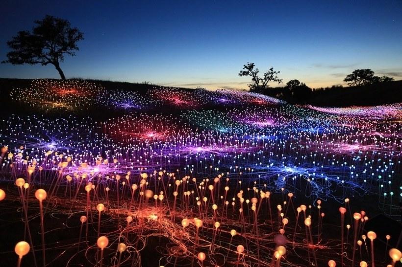 интересен вариант световое поле азия фото лотов очень много