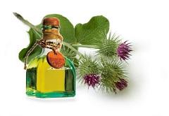 Репейное масло: источник сил…
