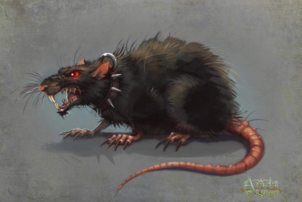 Ужасные факты про обычных крыс