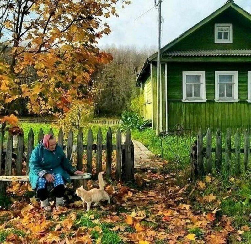 Фотографии, которые отправят нас на минутку в детство, к бабушке и дедушке в деревню позитив