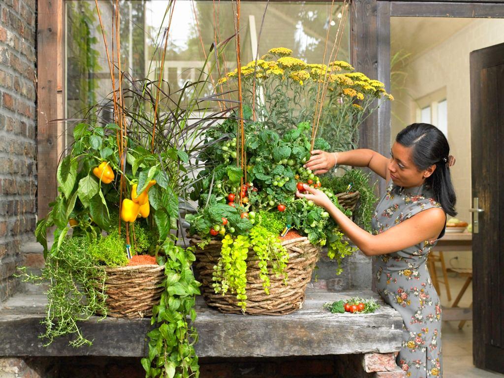 Балкон, веранда, патио в цветах: серый, светло-серый, темно-зеленый, бежевый. Балкон, веранда, патио в стиле экологический стиль.
