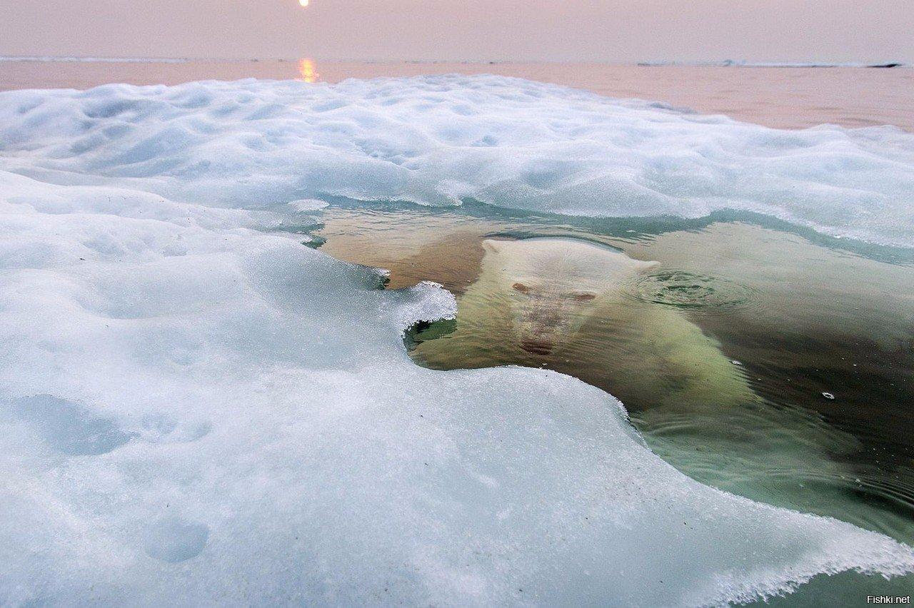 Это одна из причин, почему я не хожу на зимнюю рыбалку))