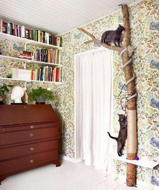 Дерево, чтобы лазить игрушки для животных, коты, собаки