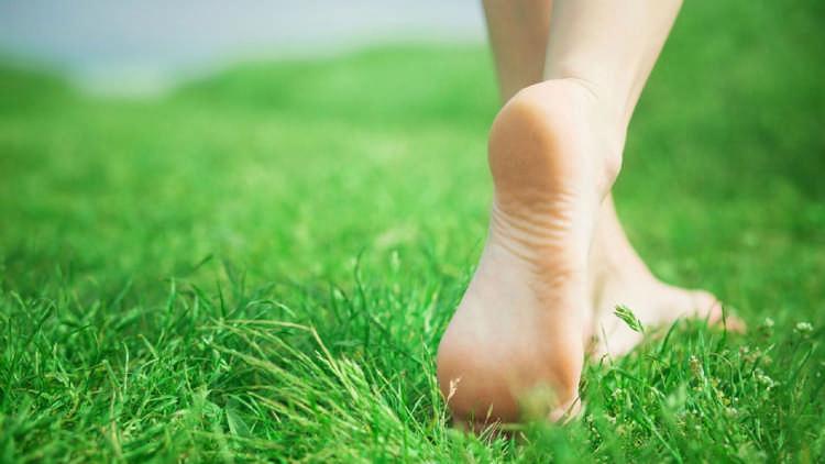 Правильный крем для ног с мо…