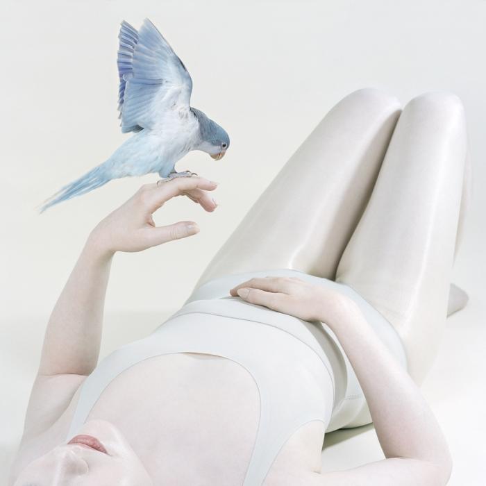 Синяя птица, 2018 год. Автор: Petrina Hicks.