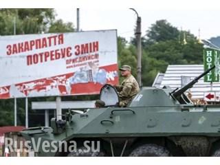 Закарпатье встаёт на путь Донбасса: Киев начал зачистки