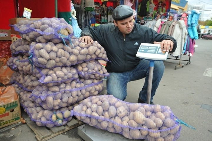 Россельхознадзор ограничил поставки картофеля из Египта