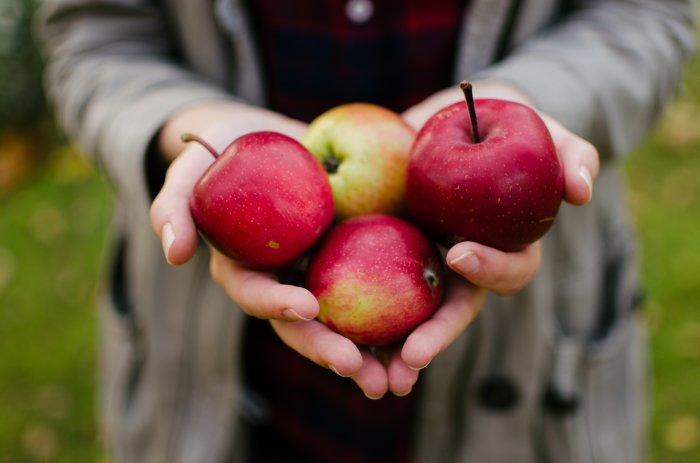 Яблочный уксус в помощь.  Фото: twitter.com.