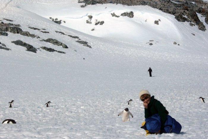 Ангела Воробьева в Антарктиде, 2013 год. / Фото: Сергей Андрийчук, www.rg.ru
