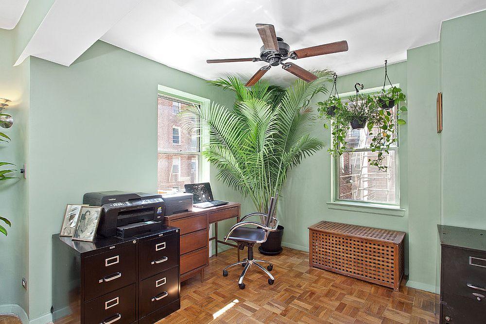 Тропическое растение добавляет экзотики домашнему мини-офису