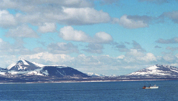 Субботняя тема:) Аляска просится в Россию И это не шутка