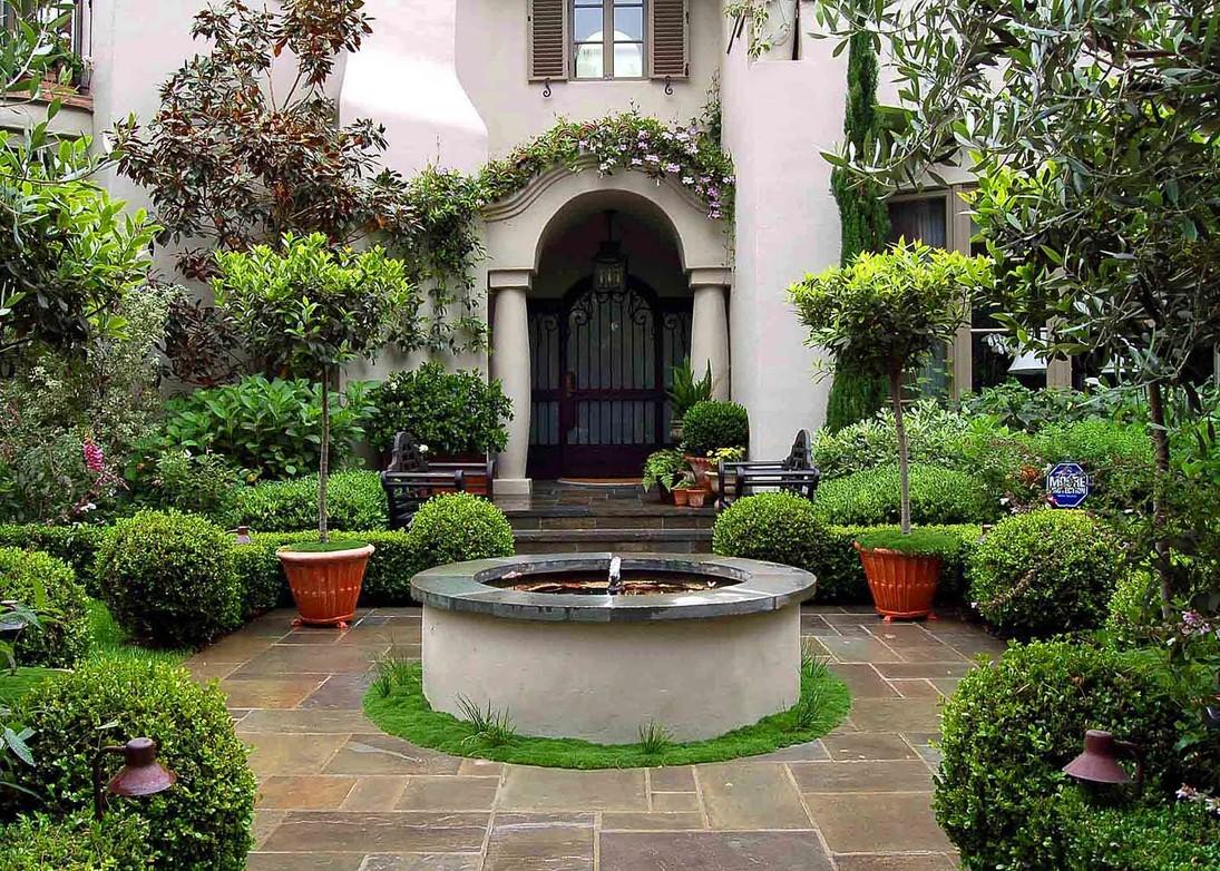 Основным требованием к растениям для озеленения патио является их декоративность в течение продолжительного времени и даже зимой.