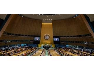 Путин, Трамп и Си в ООН как второе прочтение войны Алой и Белой розы геополитика