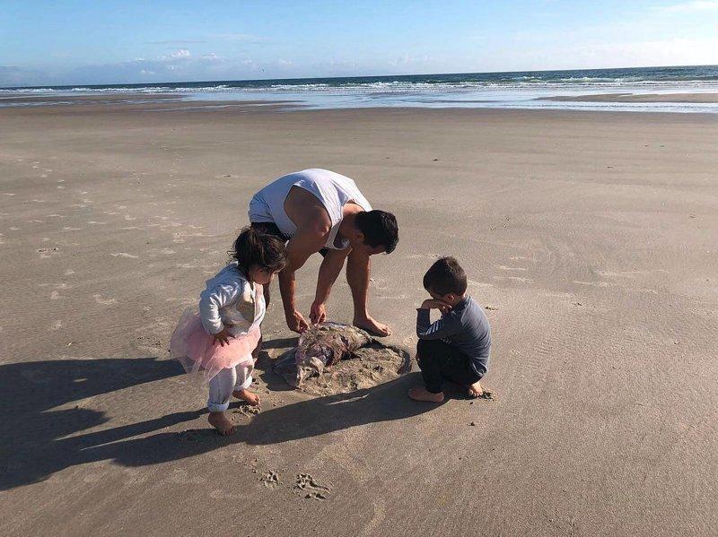 В Новой Зеландии на пляже нашли гигантскую медузу, которая выглядела как пришелец в мире, волосистая цианея, животные, медуза, находка, новая зеландия, пляж