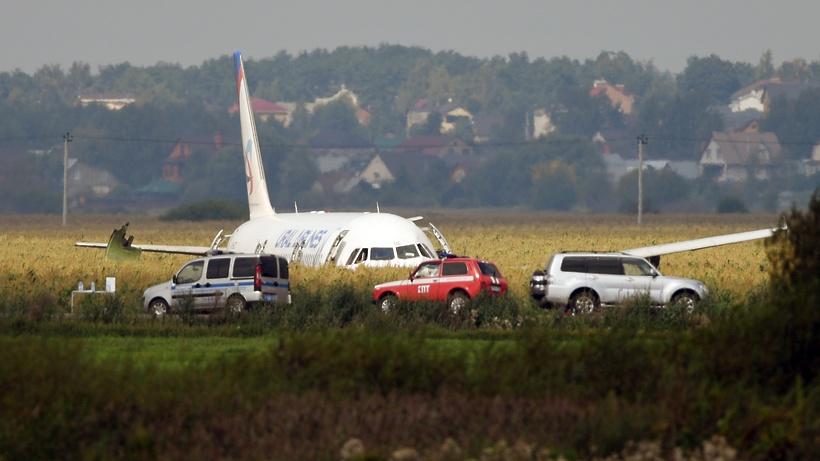 Кадры с места аварийной посадки самолета Airbus А‑321 в Подмосковье