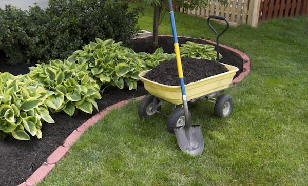 Как забыть о прополке сорняков на 25 лет