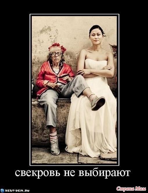 Картинки про свекровь и невестку прикольные, доброго