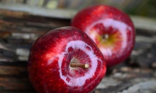 Яблочный спас: о чем помнить…