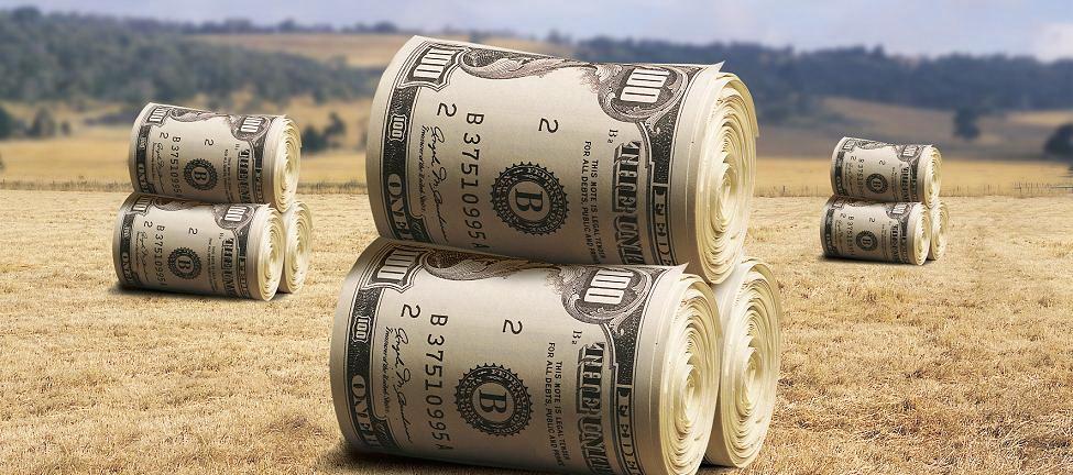 Завывающие о борьбе с коррупцией западные партнеры первыми начнут давать взятки при дерибане украинской земли