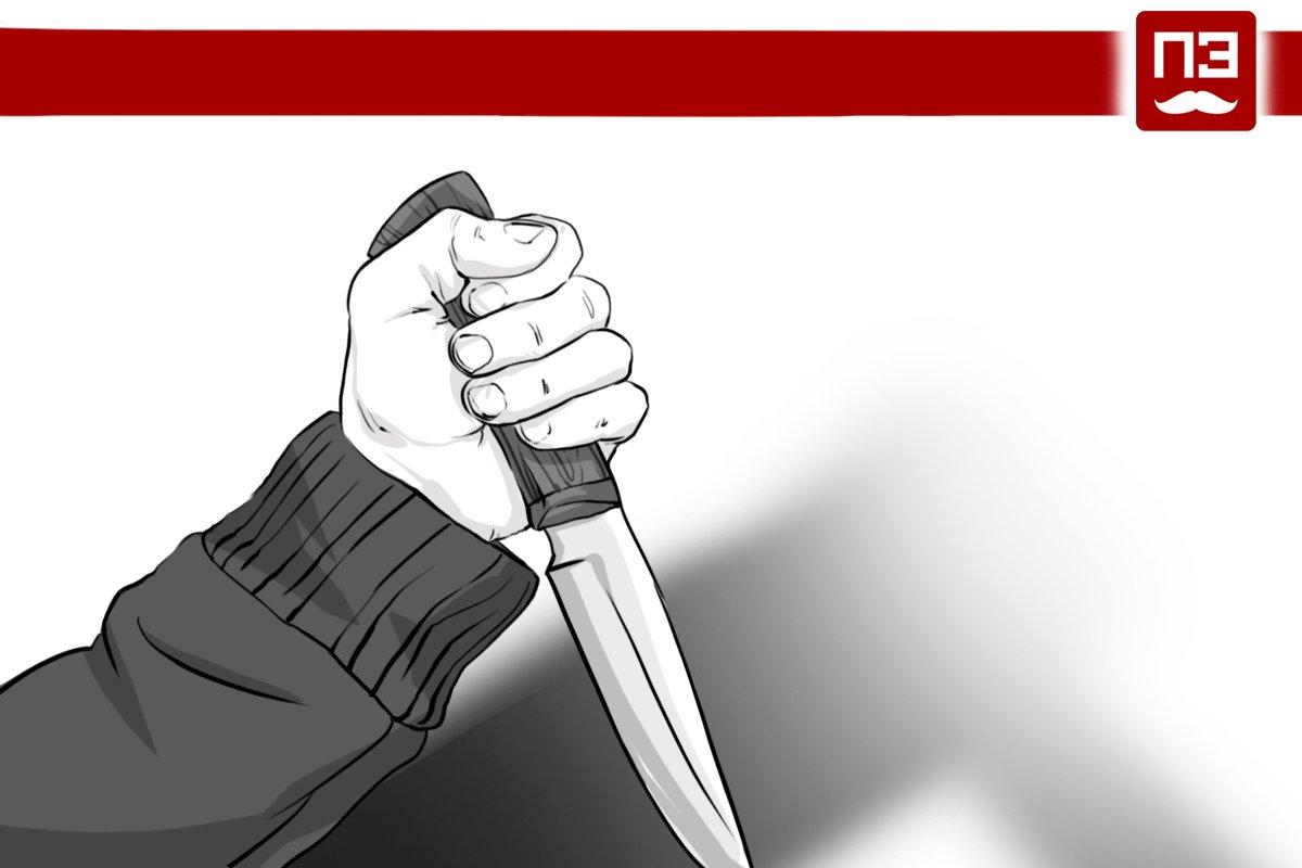 Стали известны подробности о напавшем на полицейского воле посольства Словакии в Москве
